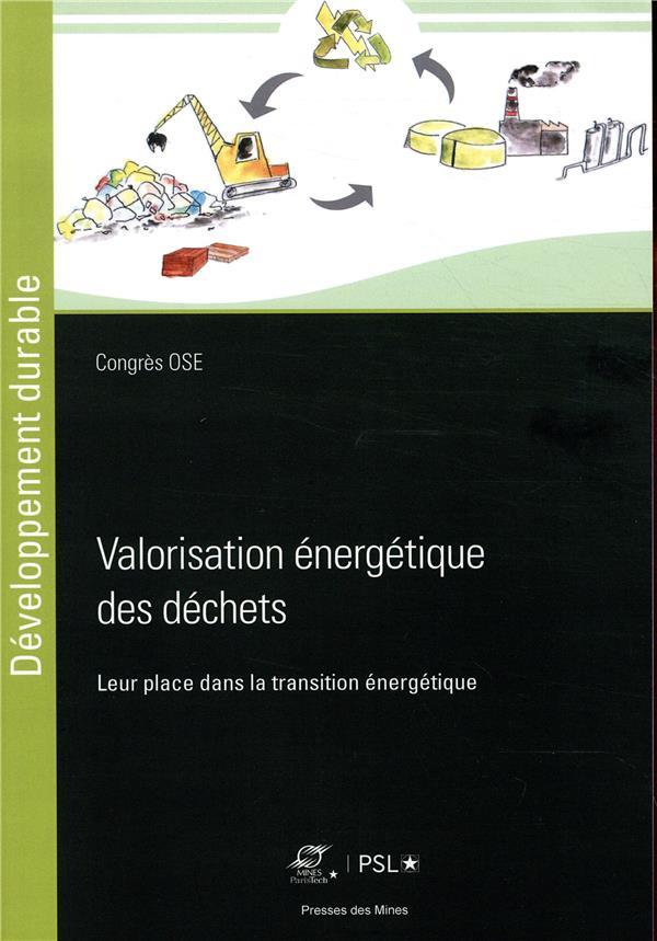 valorisation énergetique des déchets ; leur place dans la transition énergetique