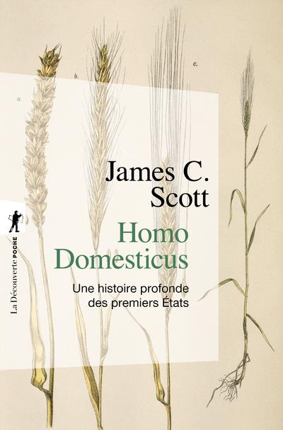 Homo domesticus ; une histoire profonde des premiers Etats