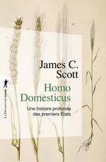 Couverture de Homo domesticus ; une histoire profonde des premiers etats