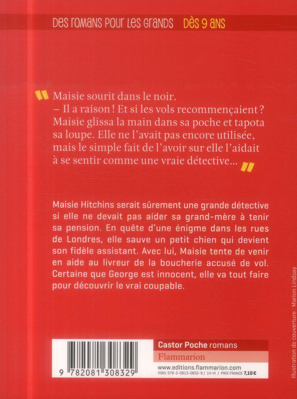 Maisie Hitchins t.1 ; l'affaire des pièces volées