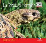 Vente Livre Numérique : La Tortue d'Hermann  - Sandrine Silhol