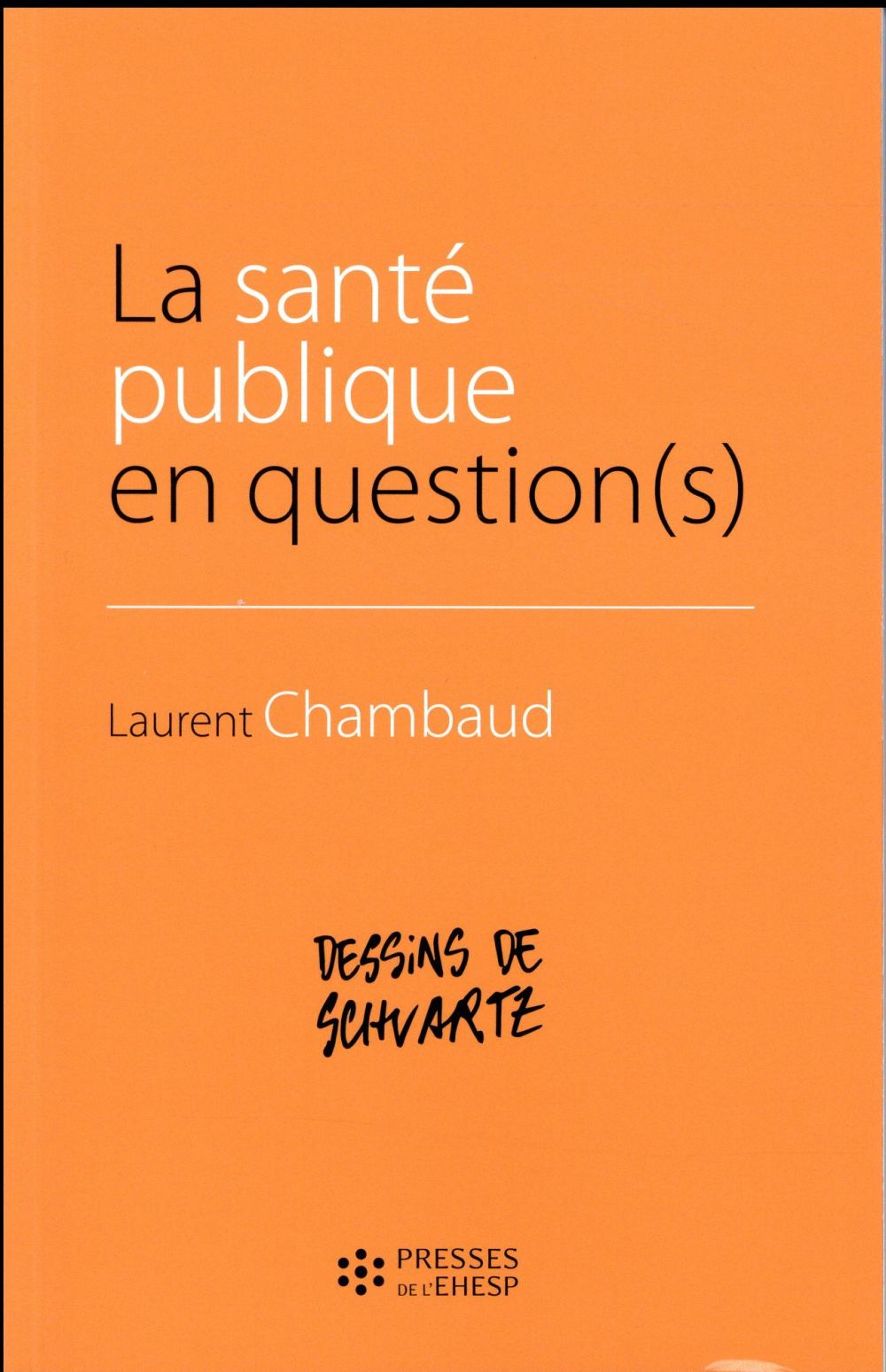 La santé publique en question(s)
