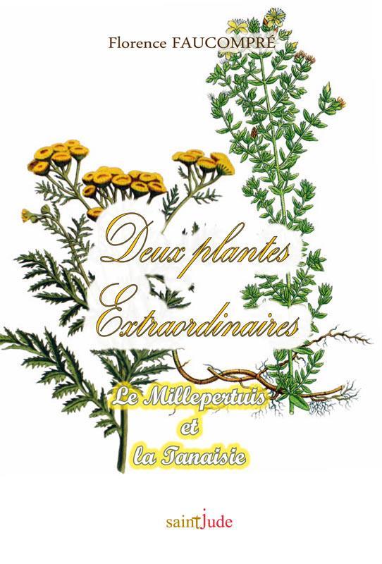 deux plantes extraordinaires ; le Millepertuis et la Tanaisie