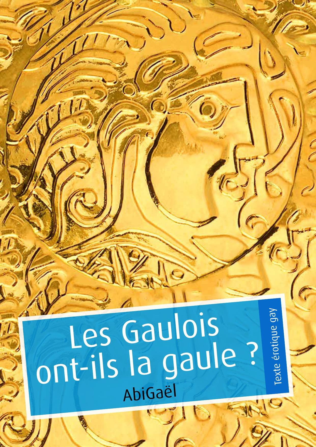 Les Gaulois ont-ils la gaule ? (érotique gay)