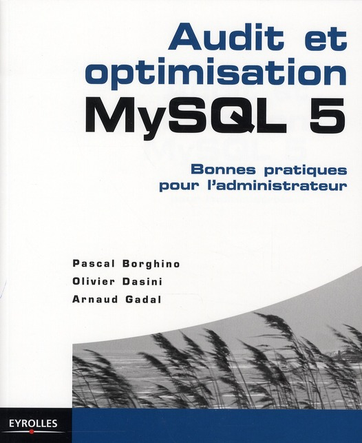 Audit Et Optimisation Mysql 5. Bonnes Pratiques Pour L'Administrateur.