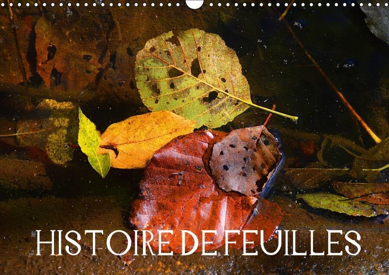 Histoire de feuilles (calendrier mural 2017 DIN A3 horizontal)