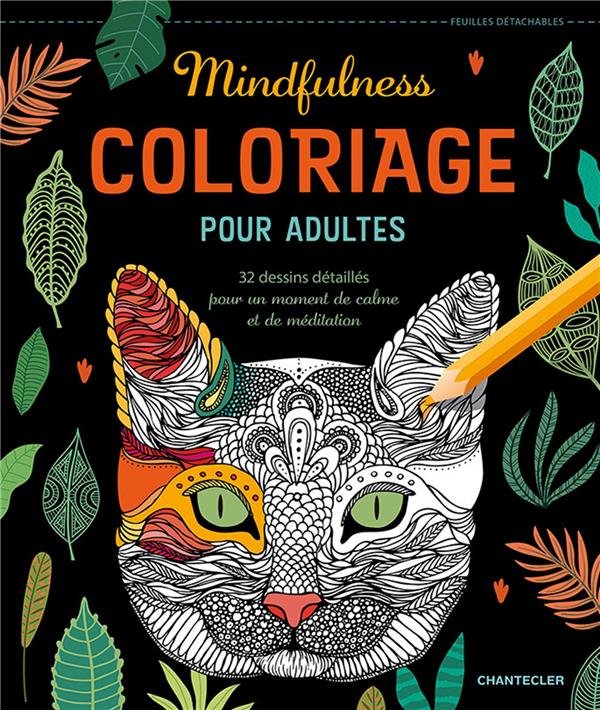 Coloriage pour adultes ; mindfulness