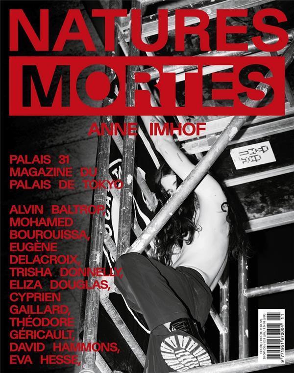 PALAIS n.31 ; natures mortes