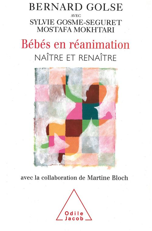 Vente EBooks : Bébés en réanimation  - Bernard Golse  - Sylvie Gosme-Seguret  - Mostafa Mokhtari