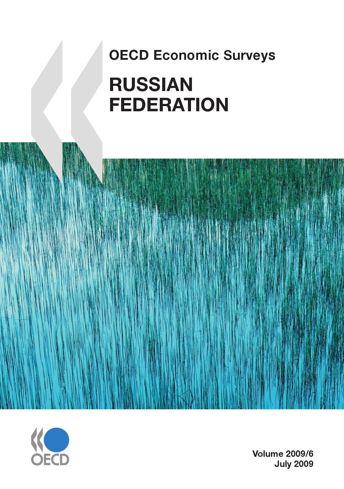 Russian federation 2009