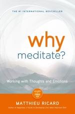 Vente EBooks : Why Meditate?  - Matthieu Ricard