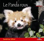 Vente Livre Numérique : Le Panda roux  - Sandrine Silhol