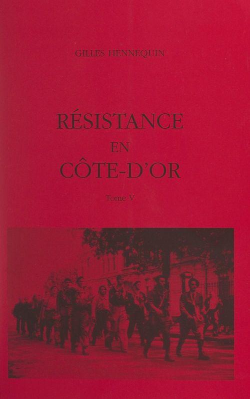 Résistance en Côte-d'Or (5)  - Gilles Hennequin