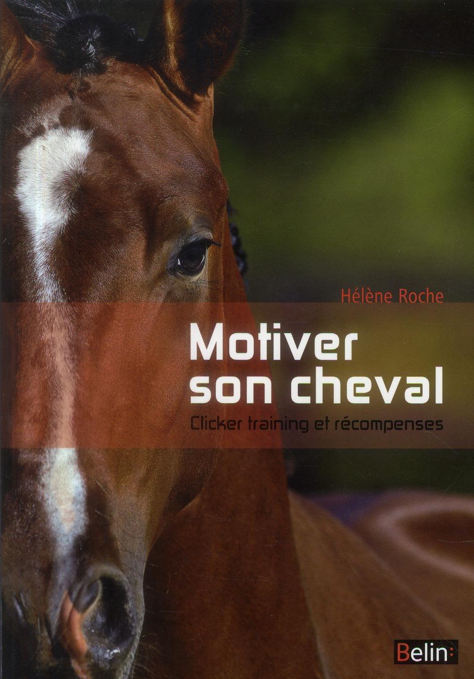 Motiver son cheval ; clicker et récompenses