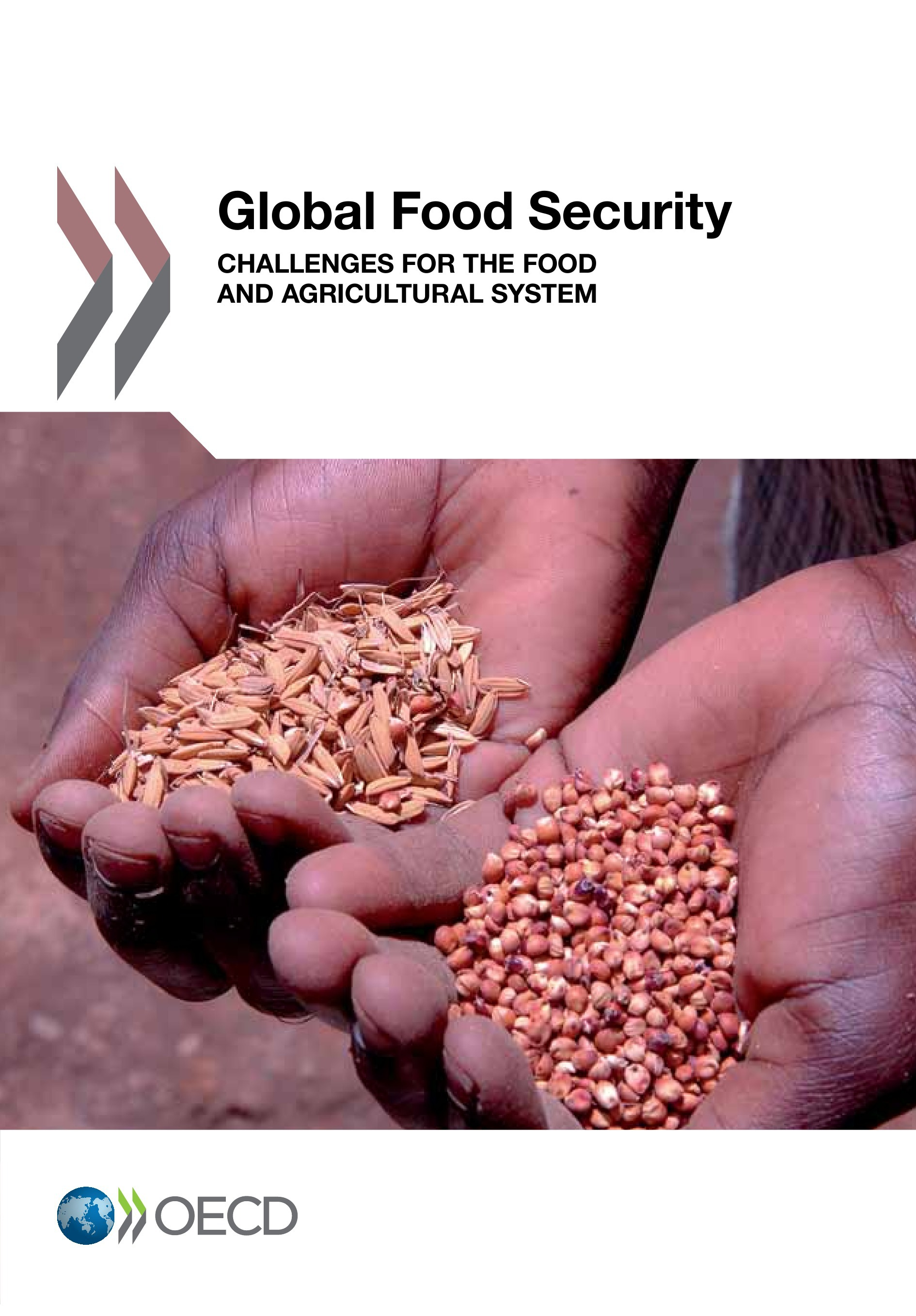 Global food security ; challenges for the food and agricultural system