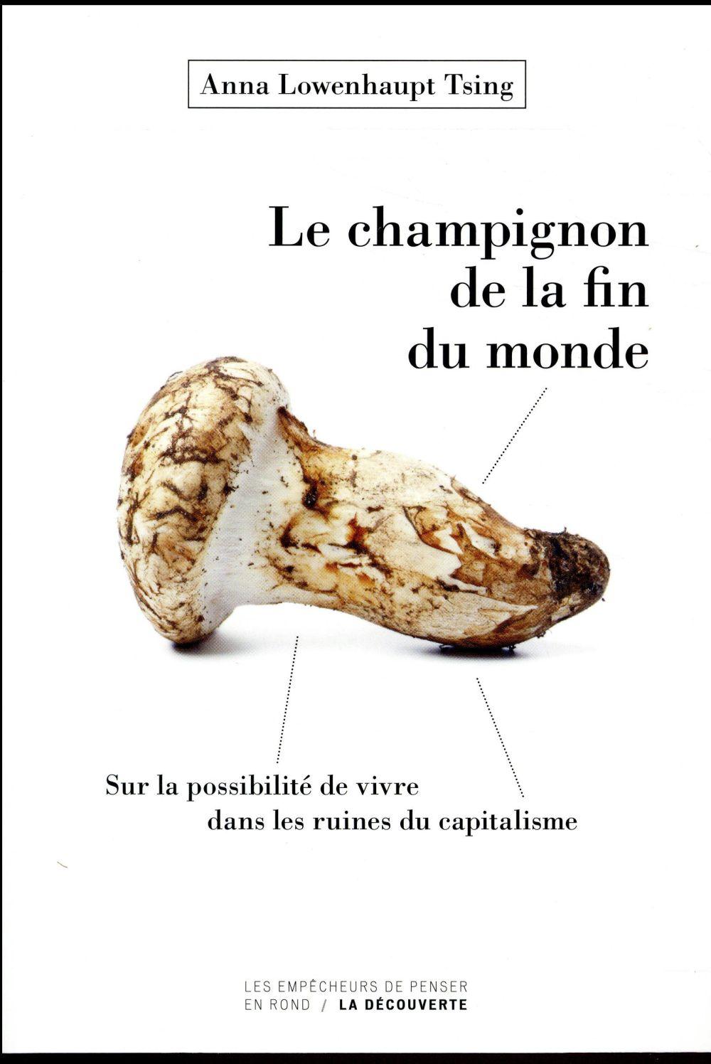 Le champignon de la fin du monde ; sur la possibilité de vivre dans les ruines du capitalisme