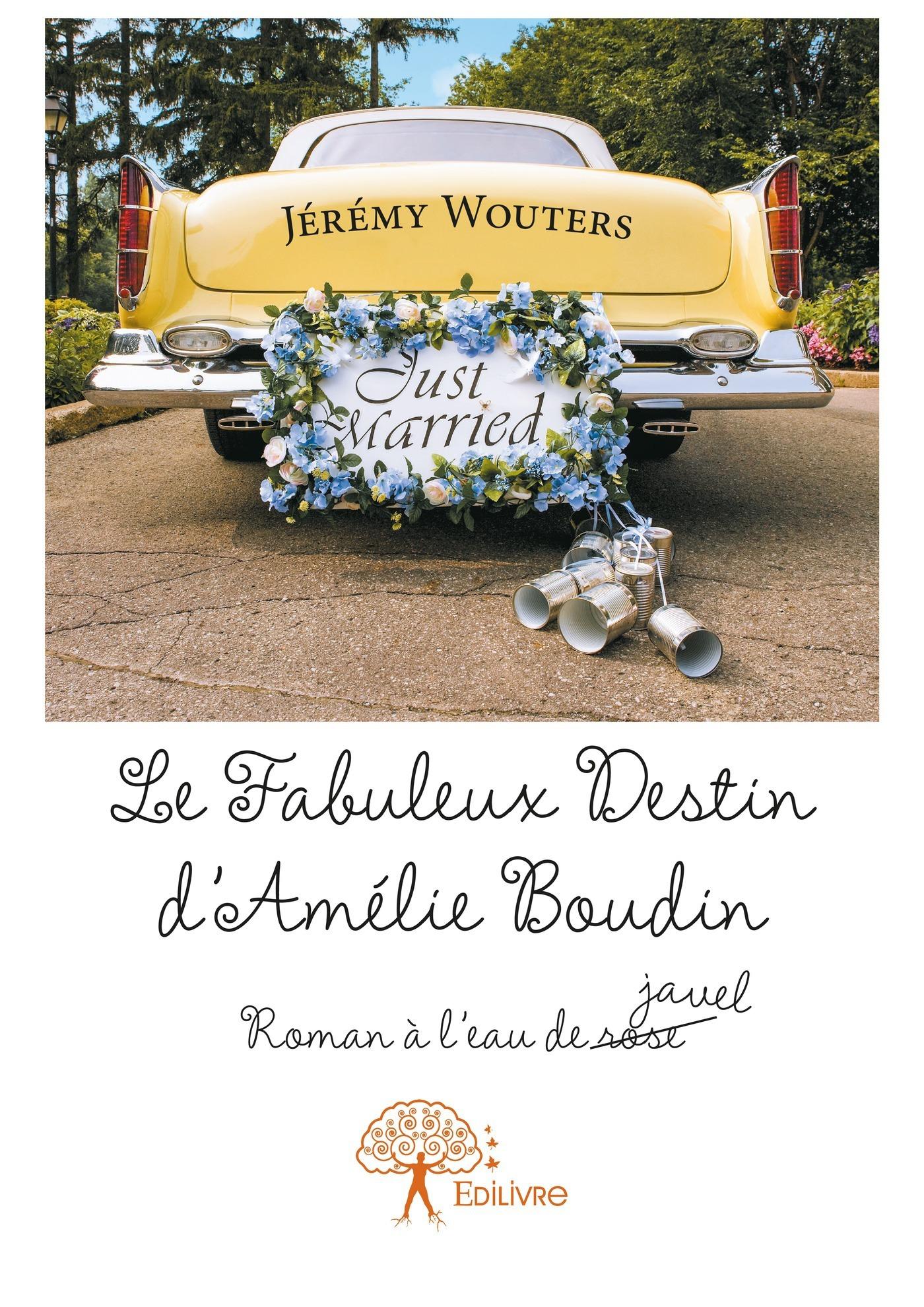 Le fabuleux destin d'Amélie Boudin