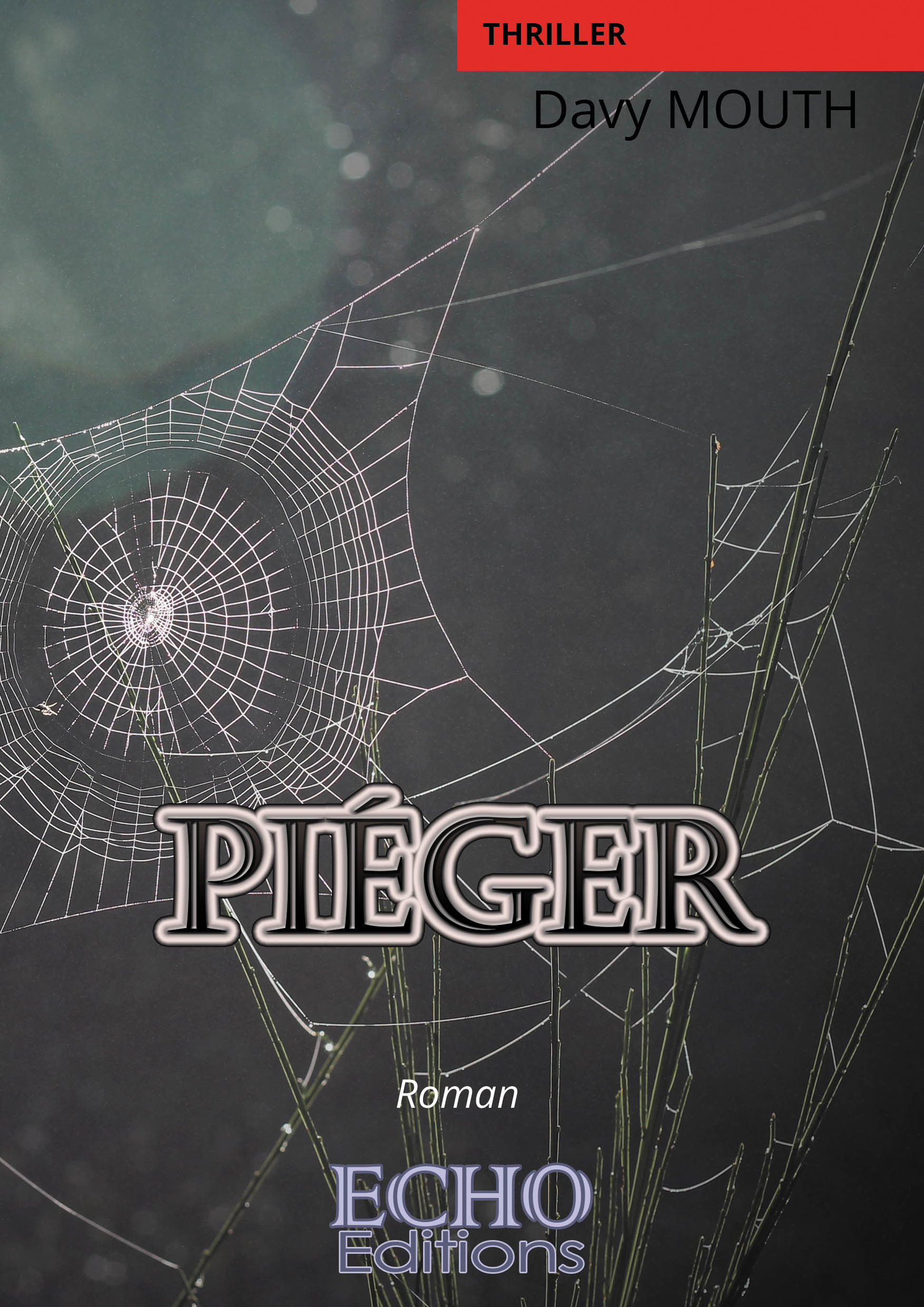 Piéger  - Davy Mouth