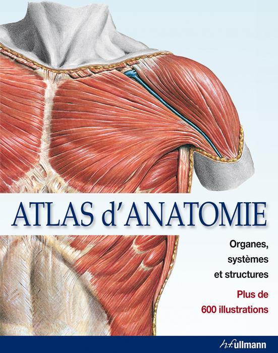 Atlas d'anatomie ; organes, systèmes et structures