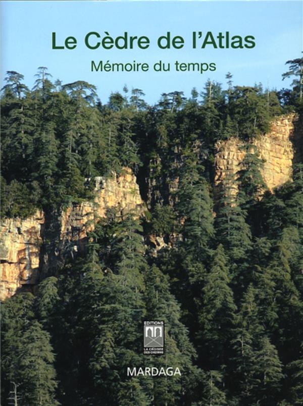 Cedre De L'Atlas, Memoire Du Temps