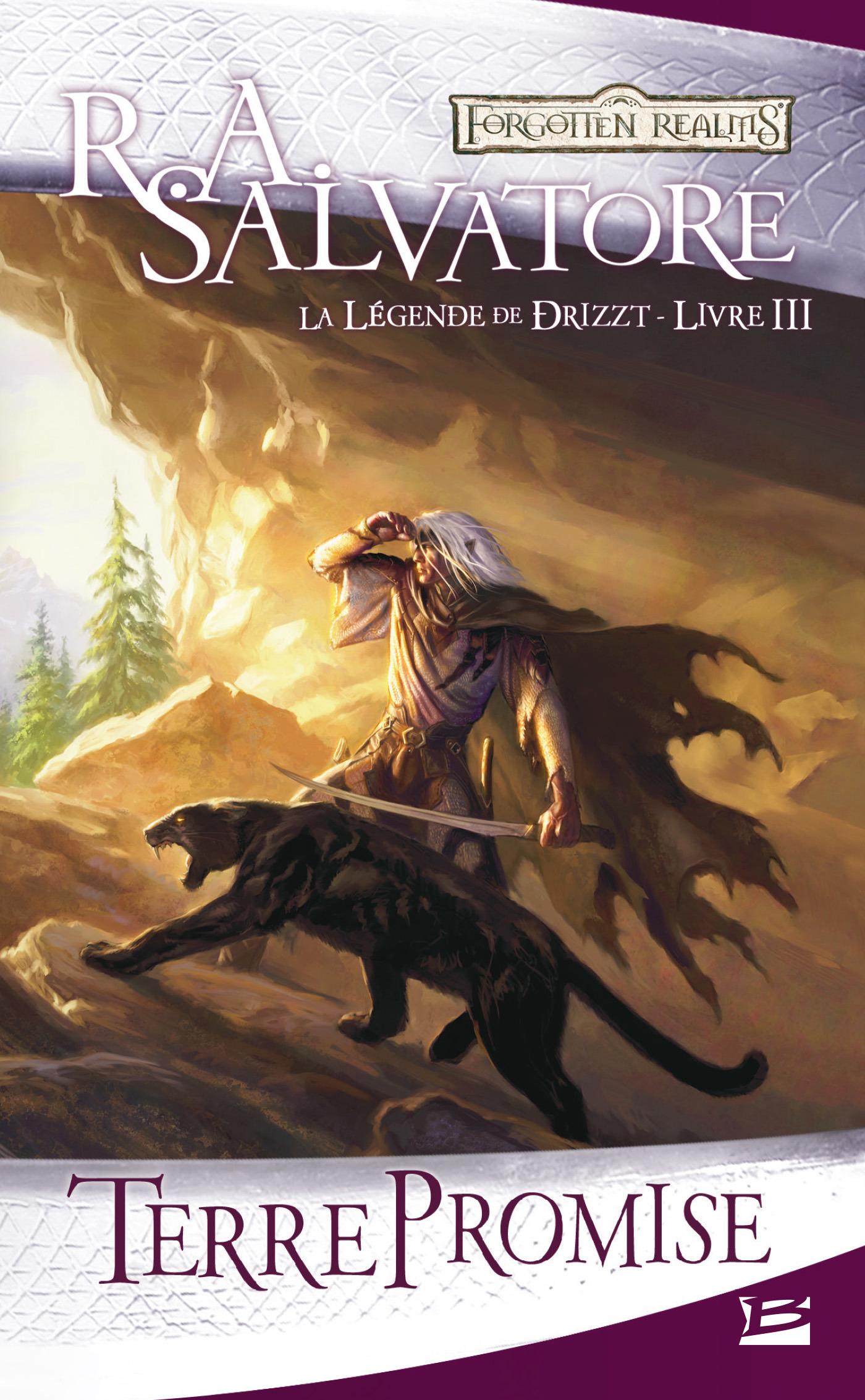 Les Royaumes Oubliés - la légende de Drizzt T.3 ; terre promise