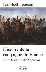 Vente Livre Numérique : Histoire de la campagne de France  - Jean-Joël Brégeon