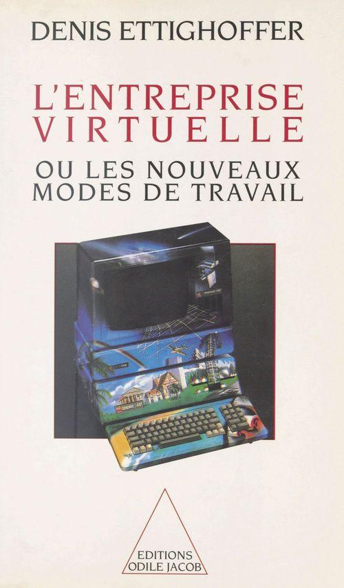 Entreprise virtuelle (l')