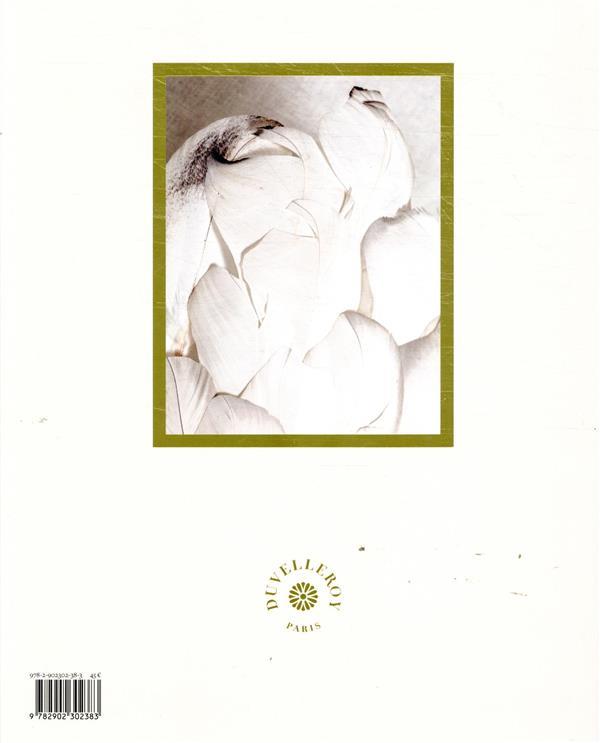 Duvelleroy ; trésors de l'éventail couture parisien