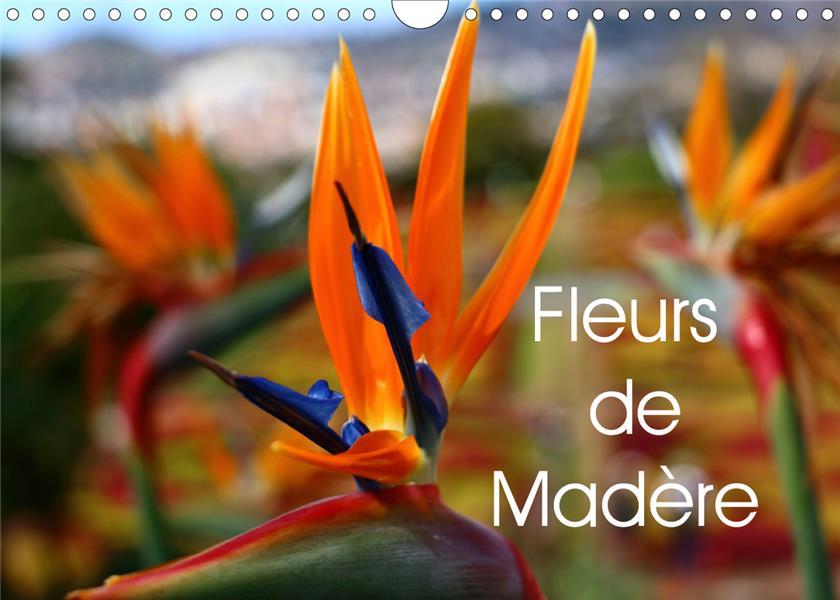 Fleurs de Madère (édition 2020)