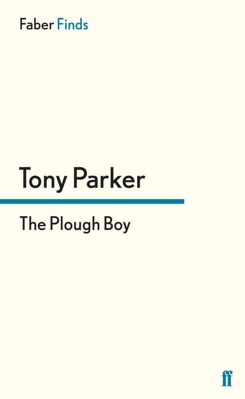The Plough Boy