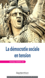 Vente Livre Numérique : La démocratie sociale en tension  - Dominique ANDOLFATTO