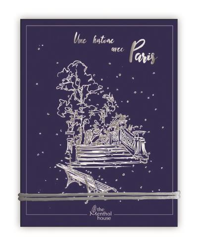 Une histoire avec Paris ; parc Monceau argent