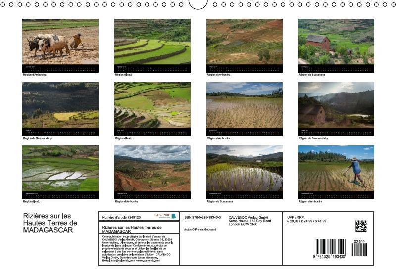 Rizières sur les Hautes Terres de Madagascar (calendrier mural 2017 DIN A3 horizontal)