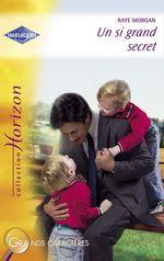 Vente EBooks : Un si grand secret (Harlequin Horizon)  - Raye Morgan