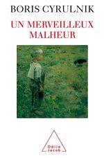 Vente Livre Numérique : Un merveilleux malheur  - Boris Cyrulnik