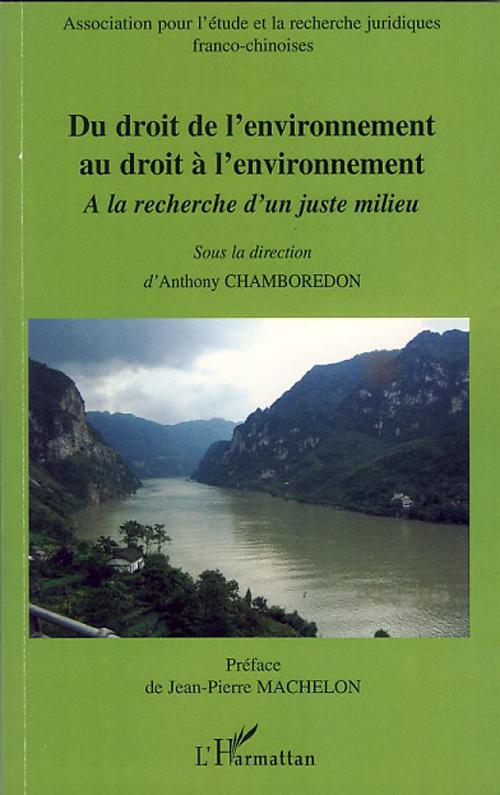 Du droit de l'environnement au droit à l'environnement ; à la recherche d'un juste milieu