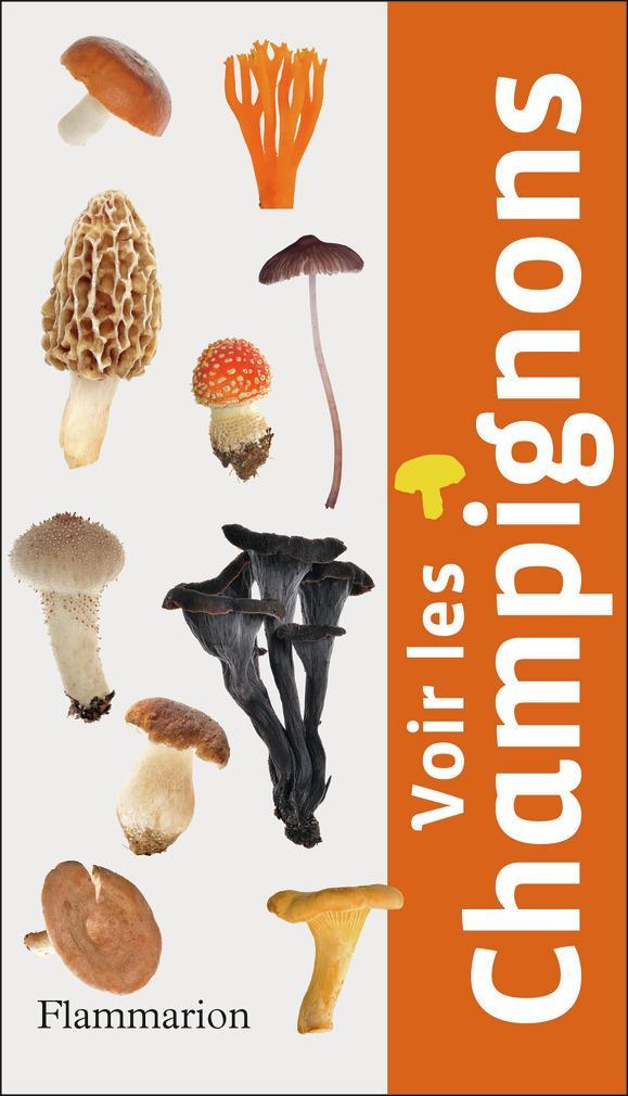 Voir les champignons