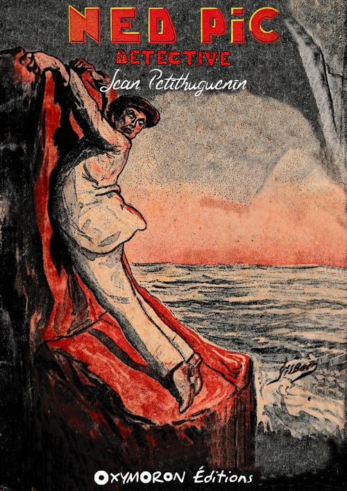 Ned Pic, détective  - Jean Petithuguenin