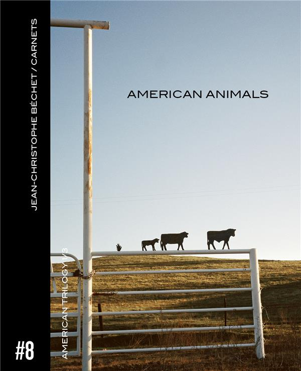 Carnet #8 ; american animals