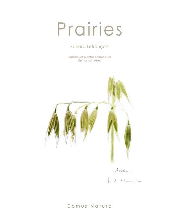 Prairies ; papillons et plantes champêtres de nos contrées
