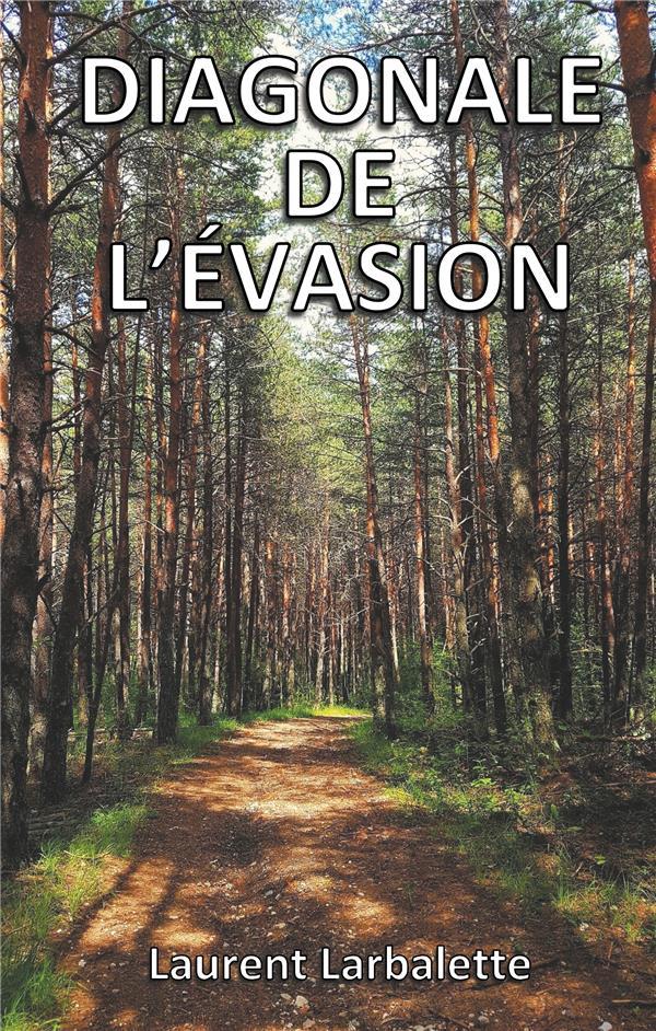Diagonale de l'évasion ; de Menton à Montmorillon à pied