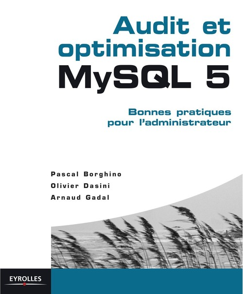 Audit et optimisation MySQL 5 ; bonnes pratiques pour l'administrateur