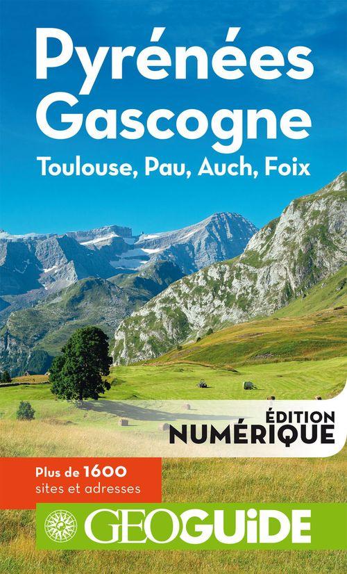 Pyrénées Gascogne ; Touluse, Pau, Auch Foix
