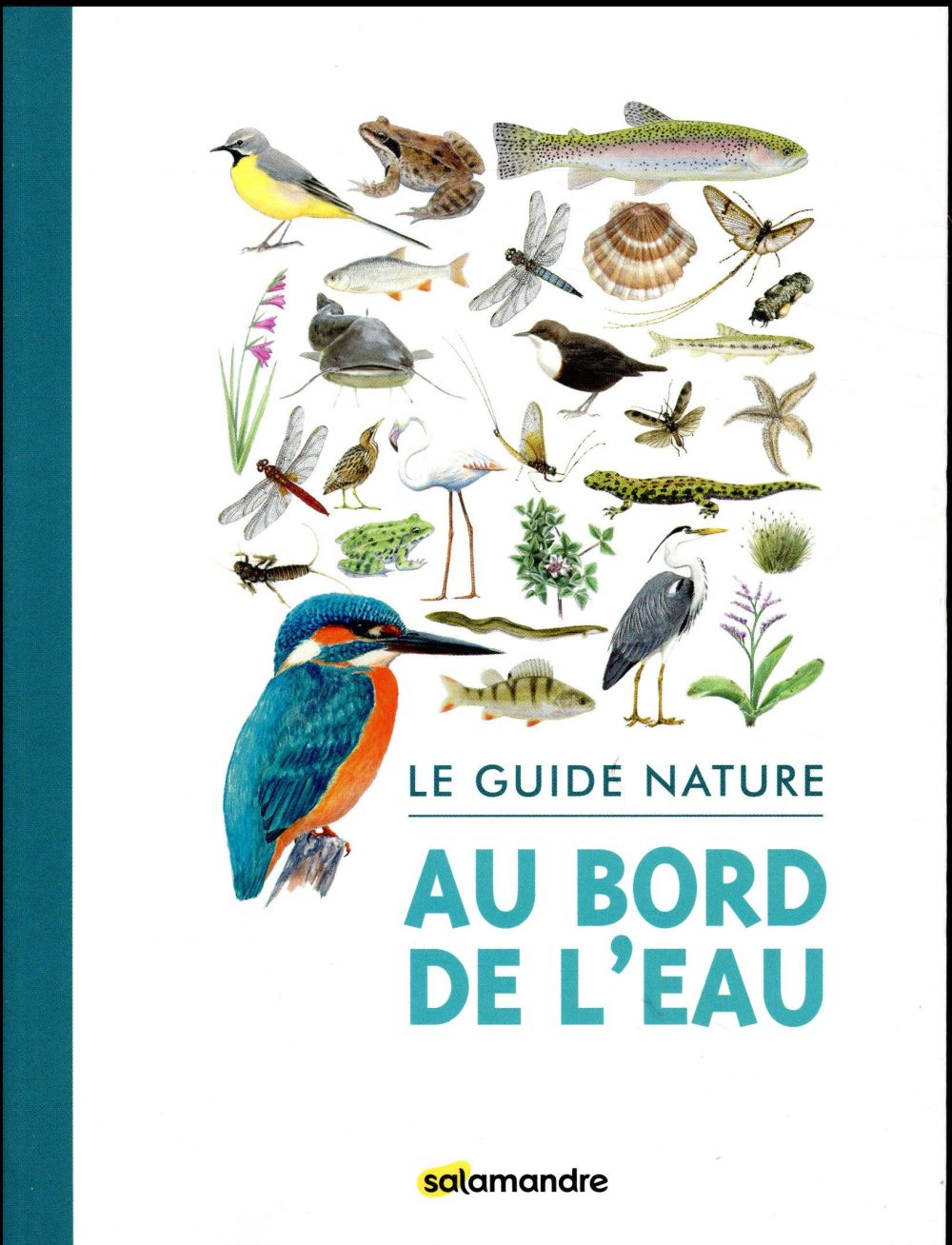 Le guide nature au bord de l'eau