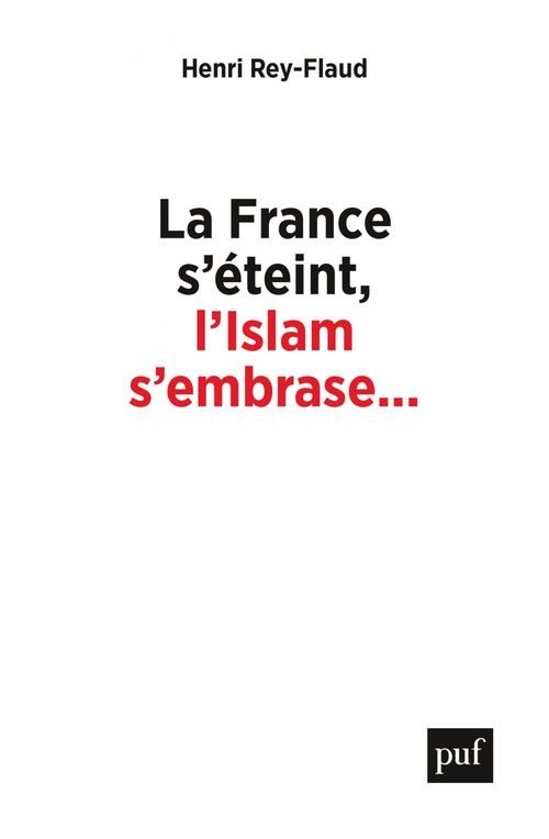 La France s'éteint, l'islam s'embrase... ; réflexions sur un malaise