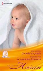 Vente EBooks : Un bébé au palais - Le secret des Trevelyan  - Margaret Way - Raye Morgan