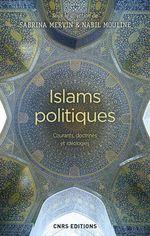 Islams politiques. Courants, doctrines et idéologies  - Nabil Mouline - Sabrina Mervin