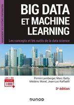 Vente Livre Numérique : Big Data et Machine Learning - 3e éd.  - Pirmin Lemberger - Médéric Morel - Marc Batty - Jean-Luc Raffaëlli
