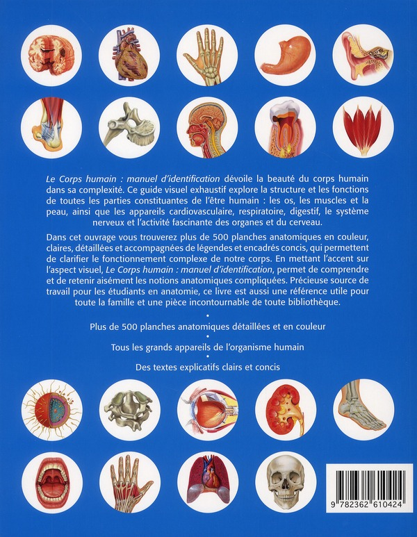Le corps humain ; manuel d'identification