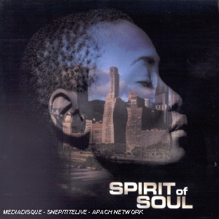 Spirit Of...soul 2003 from the roots to the fruits